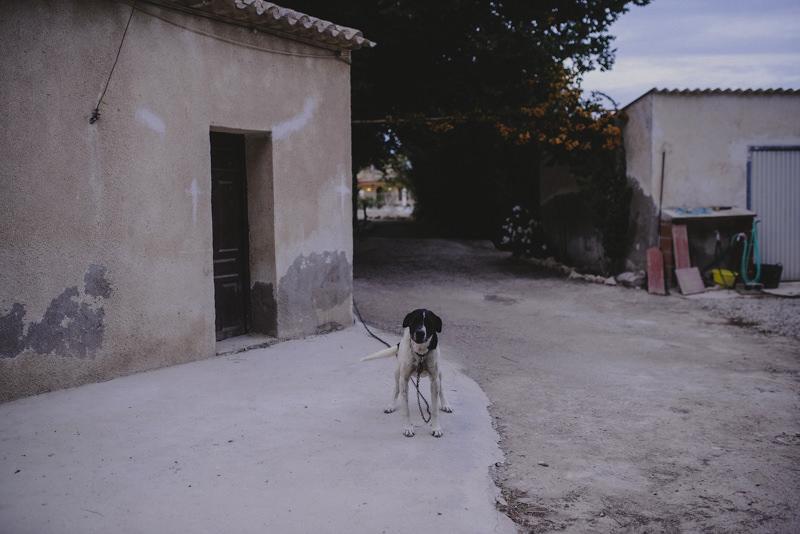 Xavi_Baeli_preboda_Lorena_Juan-41